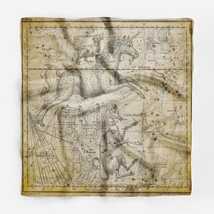 Horse and Map Silk Scarf - Joy Street