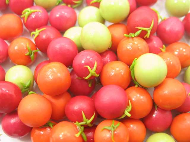 Lot Loose Mixed Tomato Vegetables Dollhouse Miniatures Food WHOLESALE