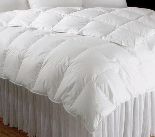Platinum Collection Comforter