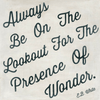 Always be on the lookout for the presence of wonder - Sugarboo and Co Art Print - Gallery Wrap