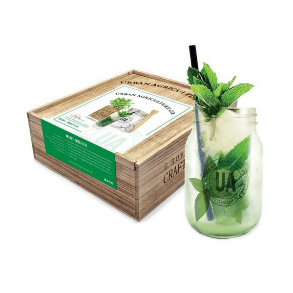 Grow Your Own Cocktail - Mint Mojito - Sugarboo and Co
