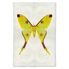 Handmade Butterfly Prints (14 options)