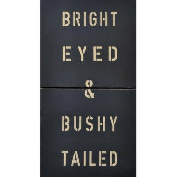 Antique Sign - Bright Eyed and Bushy Tailed - Black - Sugarboo and Co