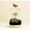 Miniscapes: Create Your Own Terrarium - Sugarboo and Co
