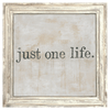 Just One Life - White Wash Frame - Sugarboo and Co