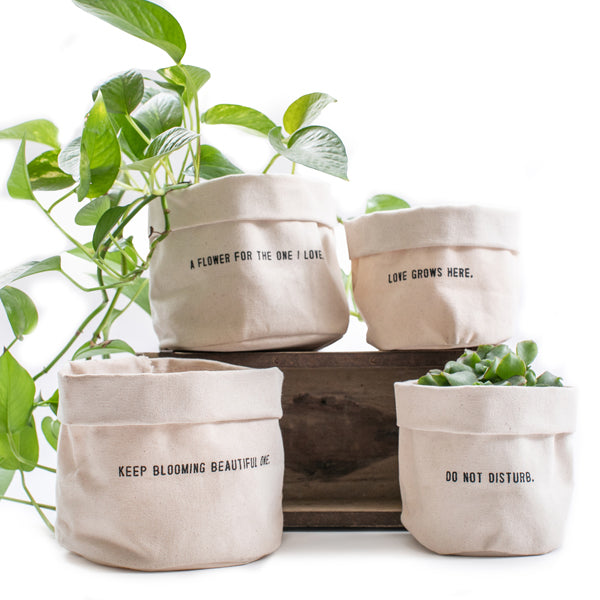 Rugged Matching Canvas Planters with Mantra Quote