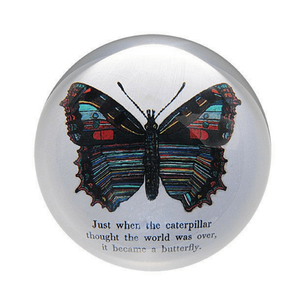 Butterfly Paperweight - Sugarboo and Co