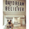 Daydream Believer Art Print - Sugarboo and Co