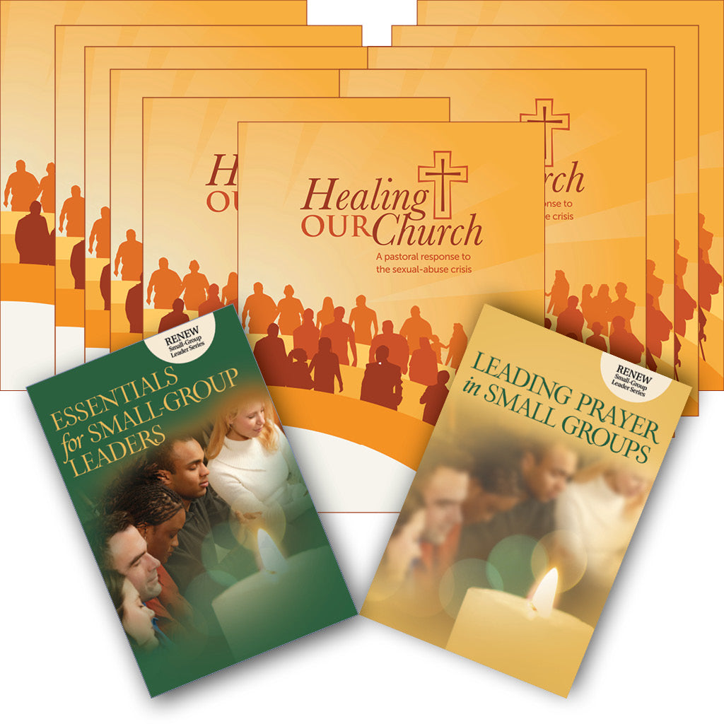 Healing Our Church: Small Group Set