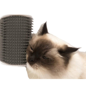 SUPERMI™Self Grooming and Massaging Cat Toy【60% OFF TODAY】