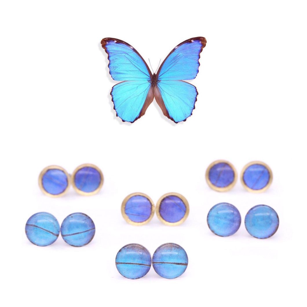 Blue Morpho Glass Studs