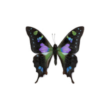 Load image into Gallery viewer, Fiesta Earrings - Purple Wings
