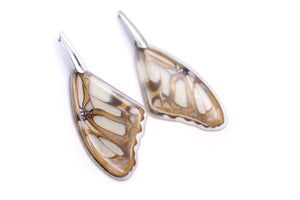 Wing Steel Earrings - Stelenes Butterfly