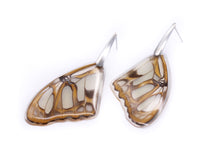 Load image into Gallery viewer, Wing Steel Earrings - Stelenes Butterfly