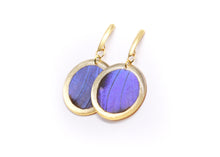 Load image into Gallery viewer, Geometric Gold Morpho Earrings - Circle