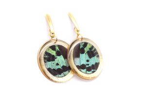 Geometric Green Sunset Earrings - Gold Circle