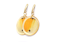Load image into Gallery viewer, Geometric Menippe Earrings - Gold Circle