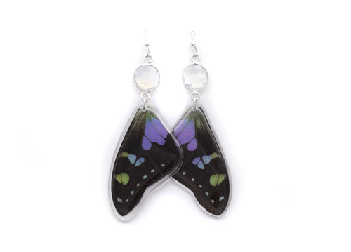 Opalite Earrings. - Purple Wings