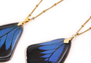 Whole Wing Necklace
