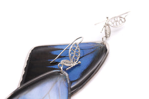 Blue Emperor Forewing Filigree Earrings