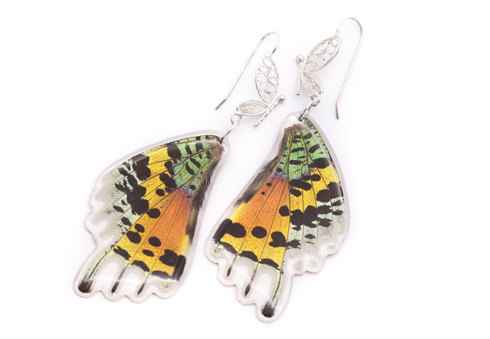 Filigree Earrings - Rainbow Sunset Moth