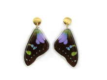 Load image into Gallery viewer, Purple Wing Earrings
