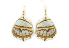 Load image into Gallery viewer, Wing Earrings - Stelenes Butterfly