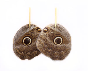 Owl Butterfly Bar Earrings