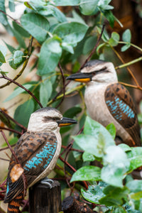 Hand Carved DecoBird Kookaburra