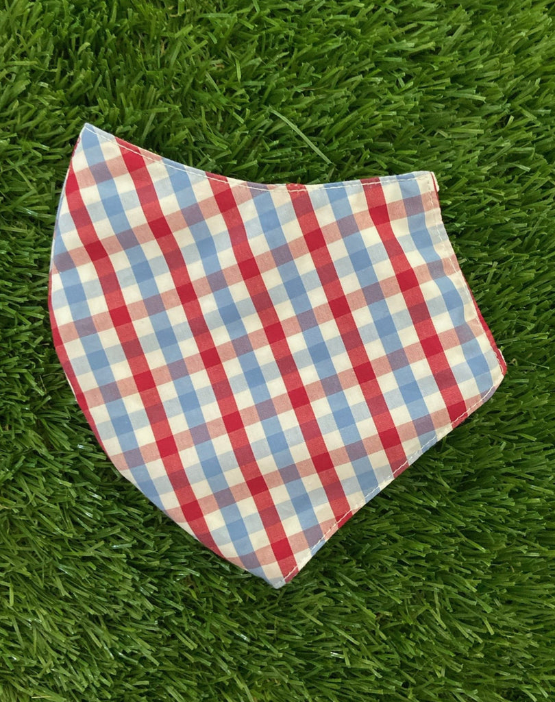 Red and blue gingham mask