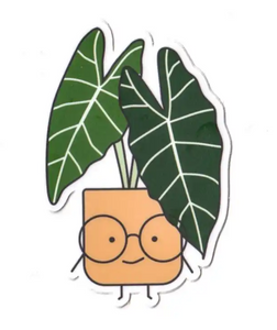 Alocasia Die Cut Sticker