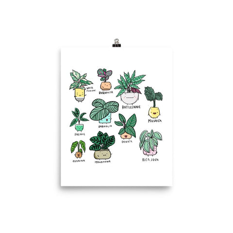 Plant Family Series Art Print