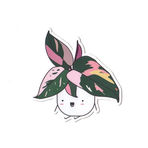 (COMING SOON) Pink Princess Philodendron Die Cut Sticker