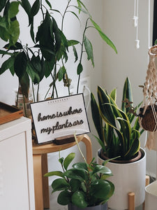 Self-Adhesive Quote - home is where my plants are