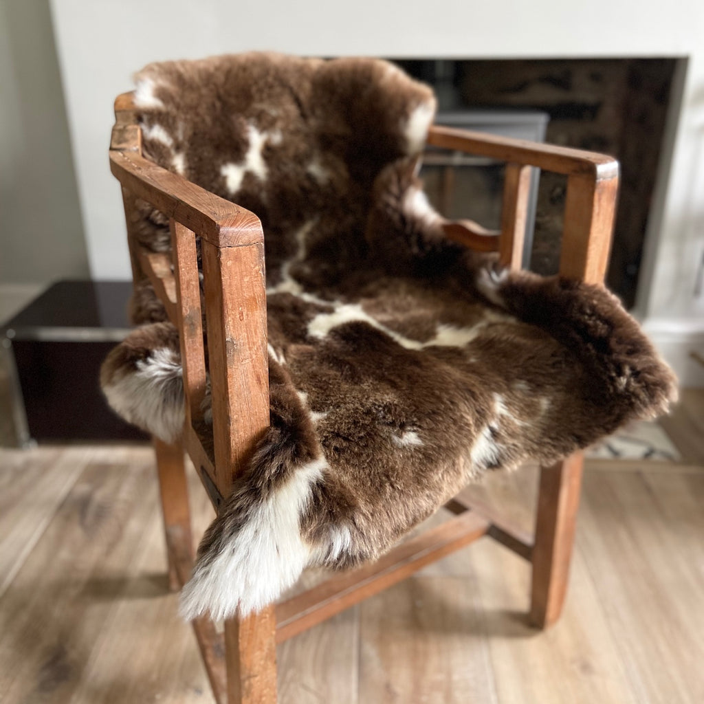 Jacob breed sheepskin rug