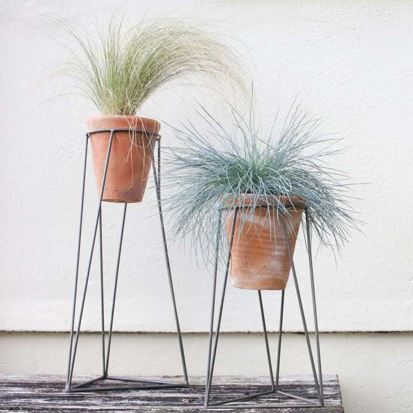 terracotta plant pot on metal stand