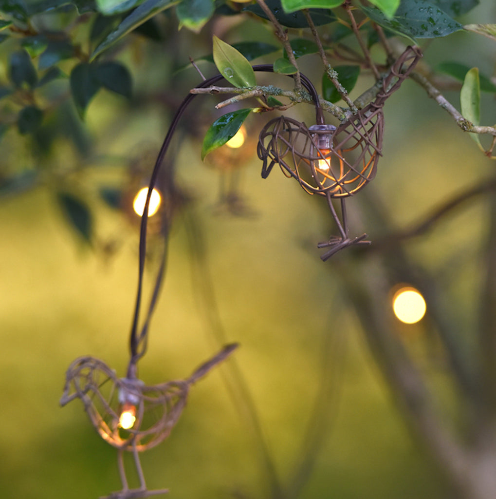 robin fairy lights by Lightstyle