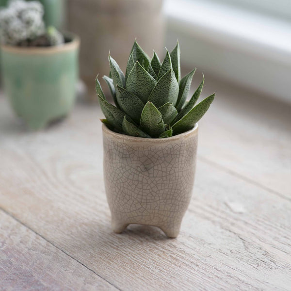 natural stone plant pot with crackle glaze