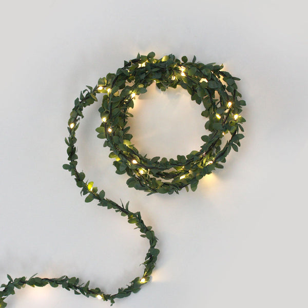 Green leaf fairy lights
