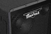 Bass Speaker Cabinet TH-1510 600Watt 1x15''+1x10""