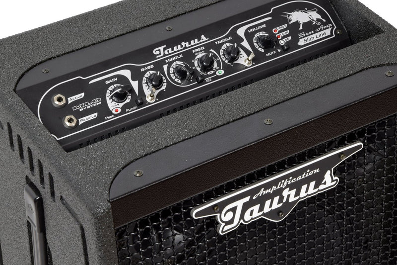 products/Bass_Combo_TS-10_Taurus_Amplification_7.jpg