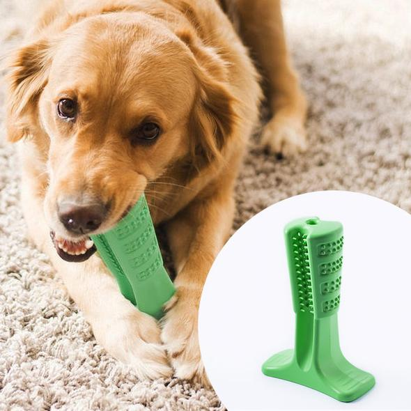 360 InstaBrush™ - World's Most Effective Toothbrush for Dogs