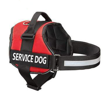 Dafneim-NEW ALL-IN-ONE™ NO PULL DOG HARNESS