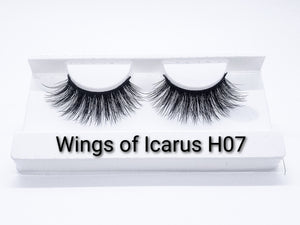 Wings of Icarus H07