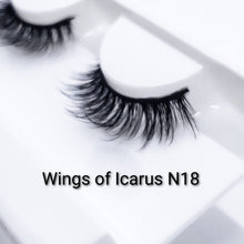 Load image into Gallery viewer, Wings of Icarus N18