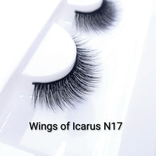 Load image into Gallery viewer, Wings of Icarus N17