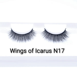 Wings of Icarus N17