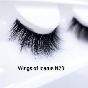 Wings of Icarus N20