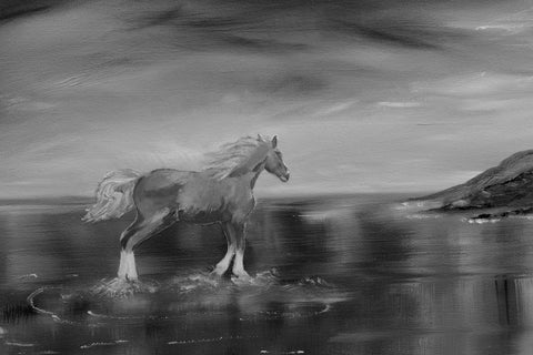 """Running Free"" (Canvas Print)"