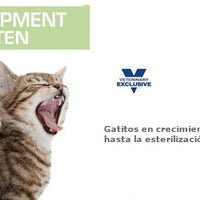 Royal Canin Alimento Gatos Development Kitten Feline Lata 165 gr Cachorros